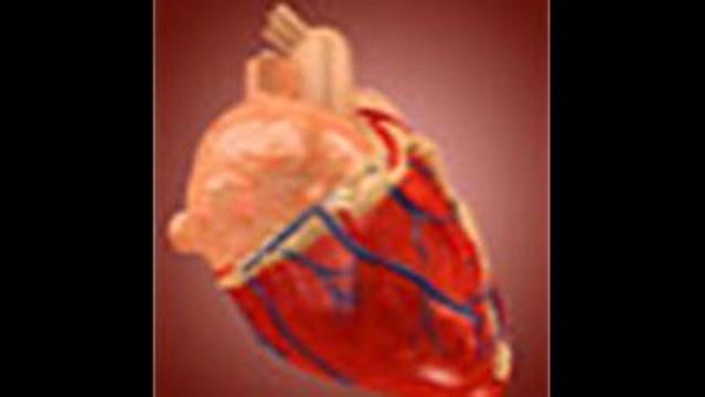 Fat Around Heart May Be Linked to Clogged Arteries