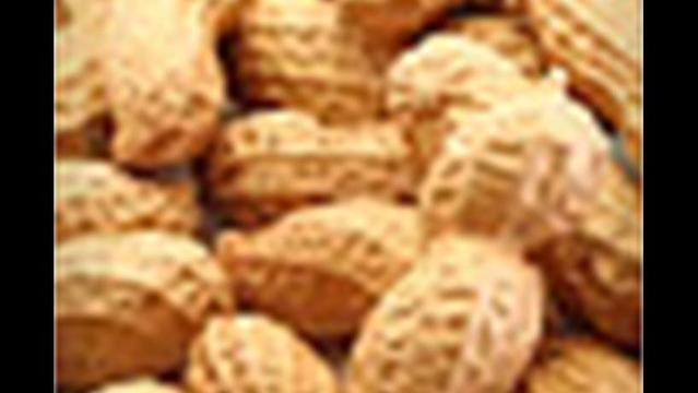 Kids With Food Allergies Targets for Bullies
