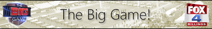 The Big Game Link Banner